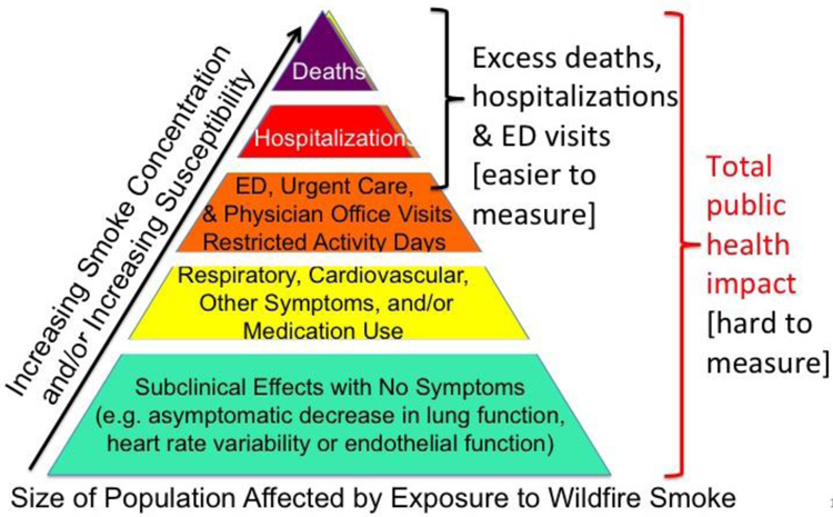 Public health impacts of wildfire smoke